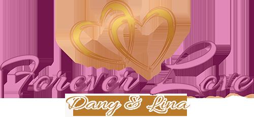 Pernikahan Dany & Lina